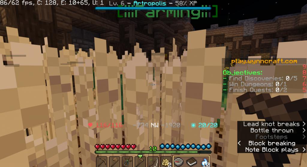 Minecraft 2 (wynn)